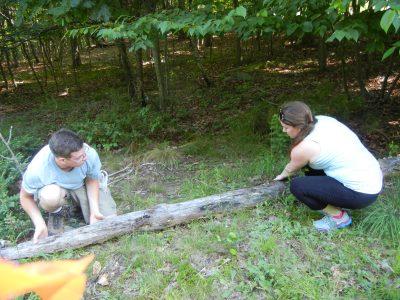 Partners rolling a log.